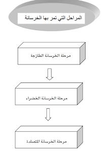 كتاب عن الخرسانة وصناعتها وانواعها واستخداماتها pdf