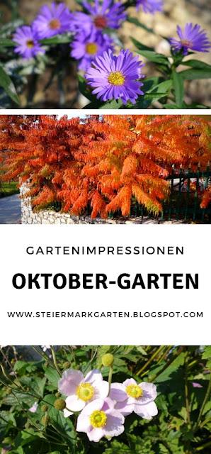 Oktober-Garten-Pin-Steiermarkgarten