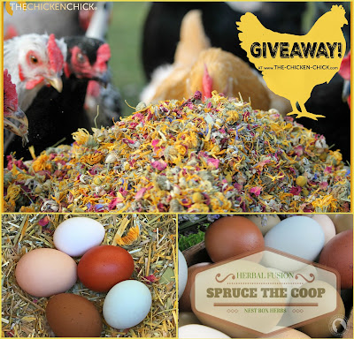 Enter to WIN a 1 lb Bag of Spruce the Coop Herbal Fusion, Nest Box & Chicken Coop Herbs at www.The-Chicken-Chick.com