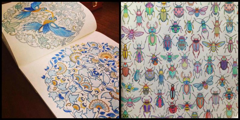 De Jardines Secretos Y Bosques Libros Para Colorear