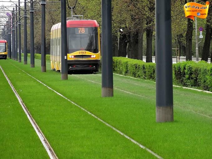 زراعة مسارات القطارات بالعشب في وارسو عاصمة بولندا !