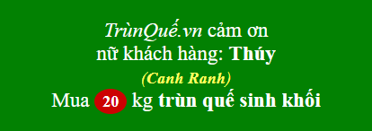 Trùn quế Cam Ranh