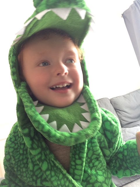 Little boy dressed as a dinosaur