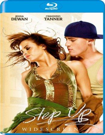 Step Up (2006) Dual Audio Hindi 480p BluRay 300MB