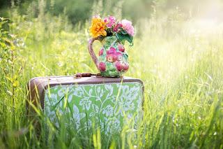 valise dans les champs
