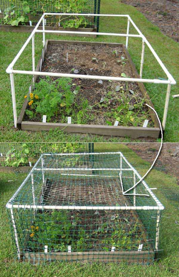 How To Build A Multipurpose Raised Bed Protective Cover Garden Favorite