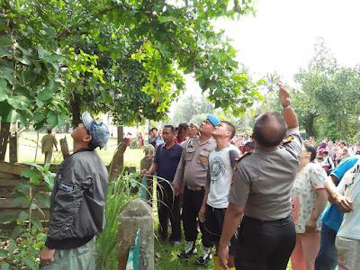 Berkembang Informasi Kevin Diminta Gurunya untuk Memanjat Pohon Jengkol