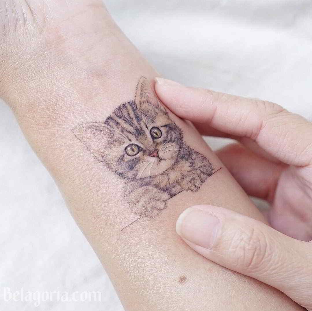 Imagen de un tatuaje de gatito en la muñeca