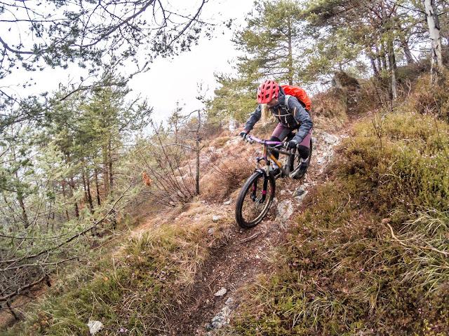 bikefestival riva del garda trail touren