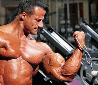 أفضل عضلات بايسبس مايك ماترازو