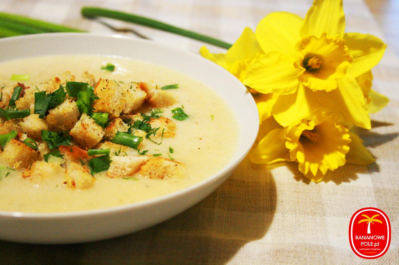 Wegańska zupa chrzanowa