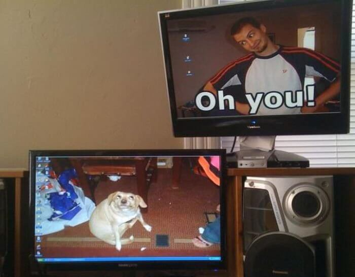 28 Creatively Hilarious Desktop Wallpapers We Wished We Had Thought Of First - Oh, You!