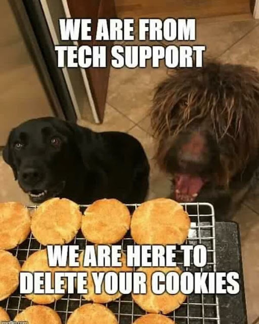 We are from tech support. We are here to delete your cookies
