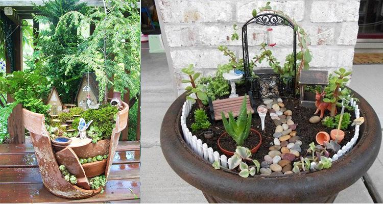 vaso mini jardim