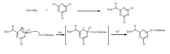 Reactive dyeing mechanism