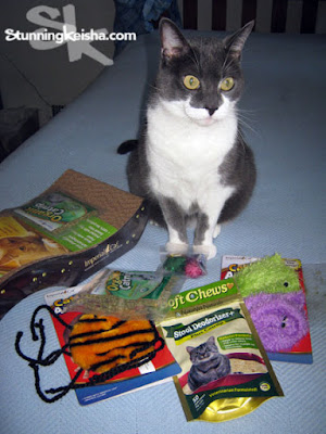 Cat Claws Subscription Box review & giveaway