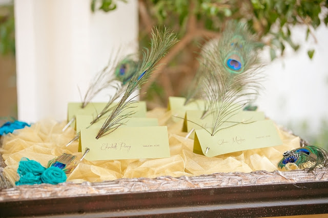 feather+wedding+theme+inspiration+blue+teal+turquoise+beige+champagne+green+reception+table+centerpiece+table+place+setting+escort+card+cards+bouquet+bridesmaids+dresses+bridal+dress+gown+meghan+wiesman+photography+26 - Show your feathers!