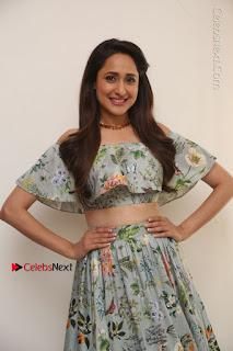Actress Pragya Jaiswal Stills in Floral Dress at turodu Interview  0111.JPG