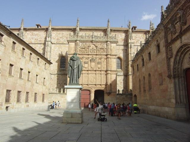 Universidad Salamanca Rana Sapo Ranita