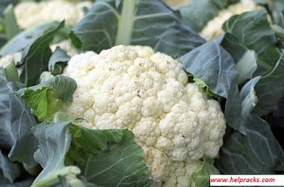 Cauliflower - कौलीफ्लावर फूल गोभी