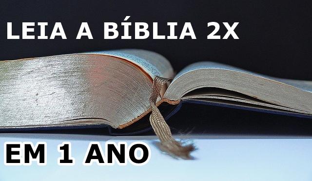 Ler a Biblia em um ano