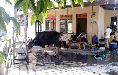 http://www.kampunggemilang.co.vu/2016/09/iedul-adha-1437-di-kampung-gemilang.html