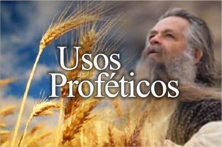 La Siega y la Cosecha como símbolos proféticos