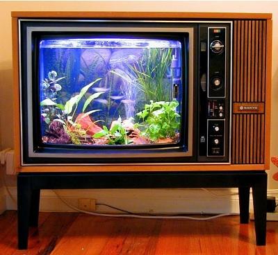 Ubah TV lama jadi aquarium, menarik.