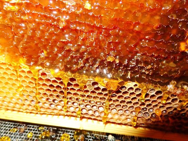 10 πράγματα που ΔΕΝ μπορείς να πληρώσεις όταν αγοράζεις μέλι .