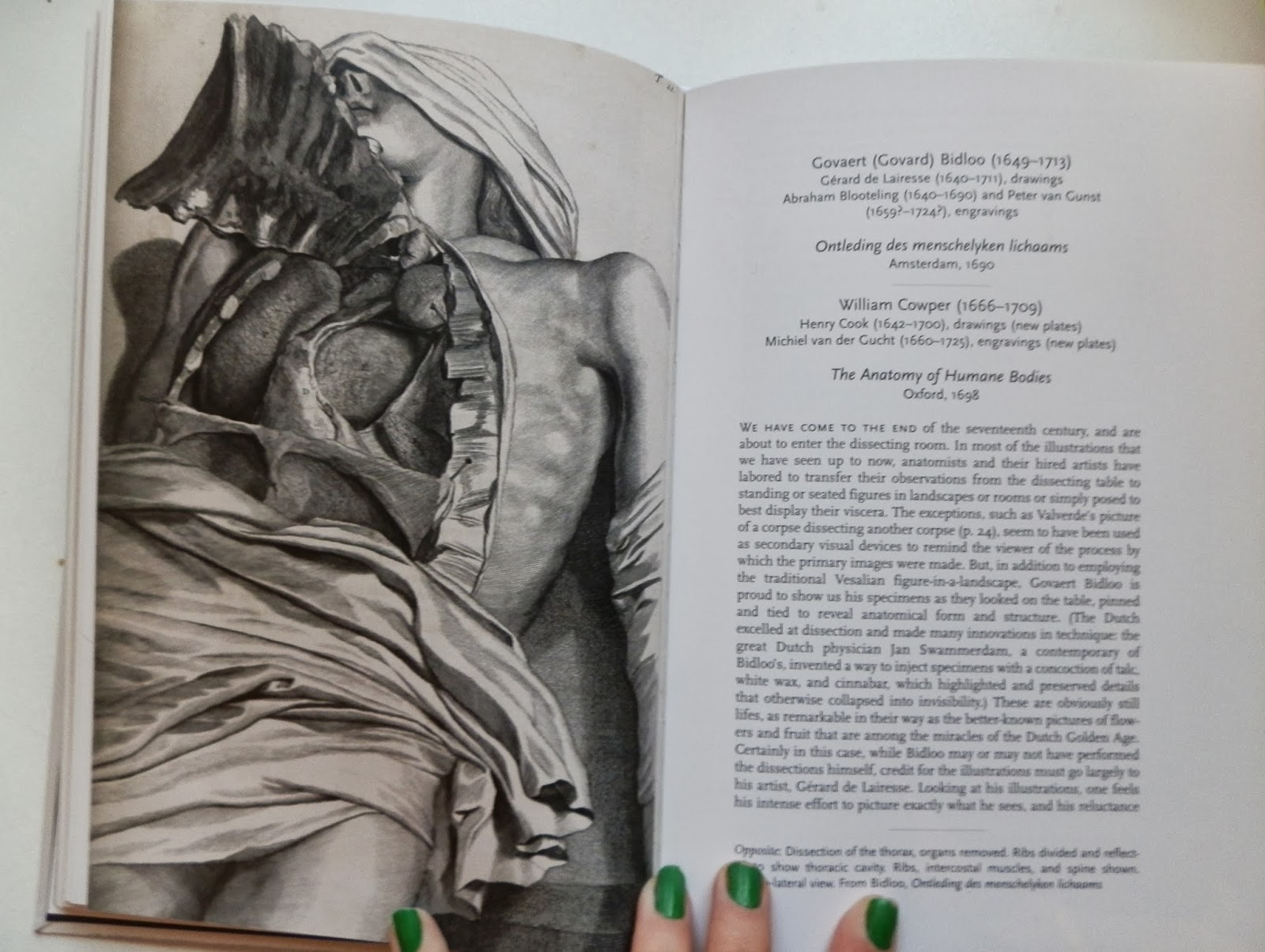 Daughter of the jaded era: Gothic Art in Spotlight: Human Anatomy ...