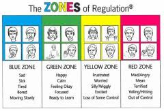 Image result for Picture of zones of regulation