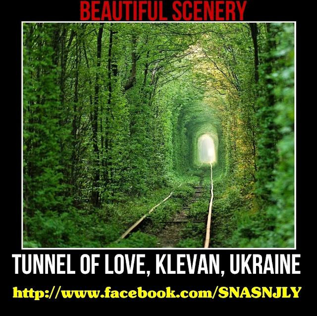 Tunnel of love, Klevan, Ukraine,Beautiful scenery
