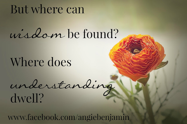where can wisdom be found?