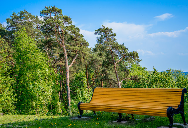 Архангельское парк фото