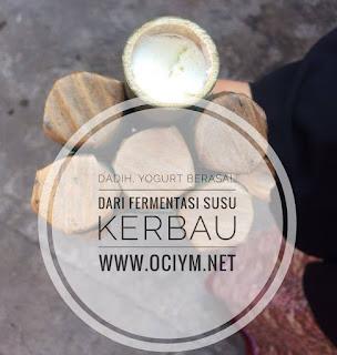 Dadih, Yogurt Berasal Dari Fermentasi Susu Kerbau