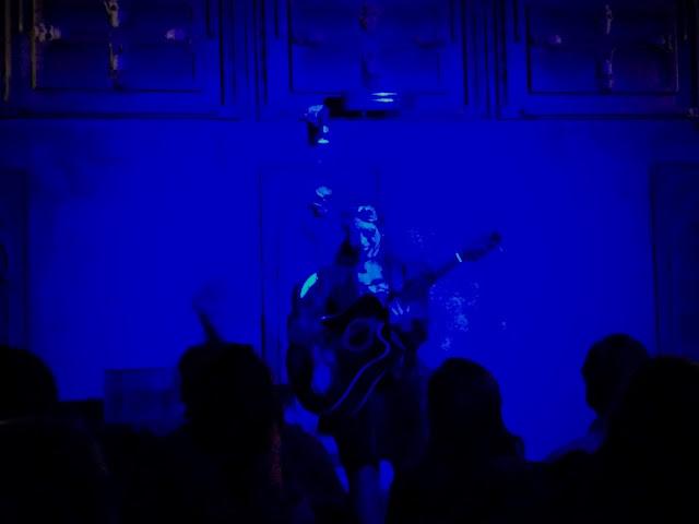 Castle Dracula Experience in Dublin - Musician