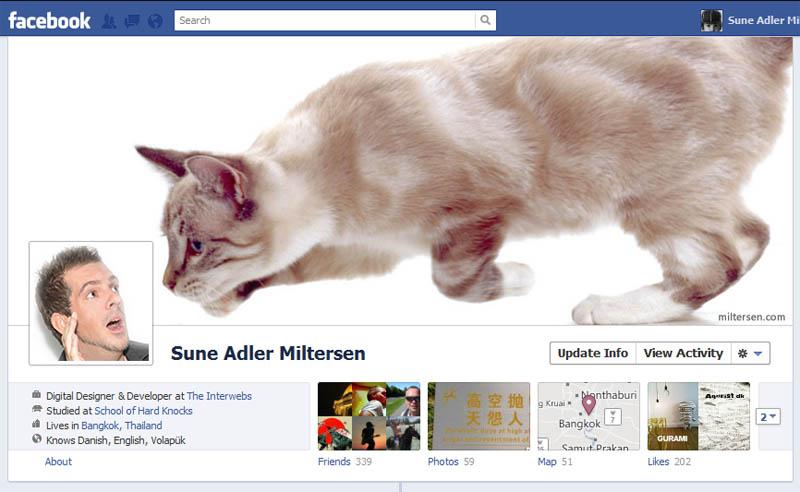 funny panda facebook timeline - photo #9