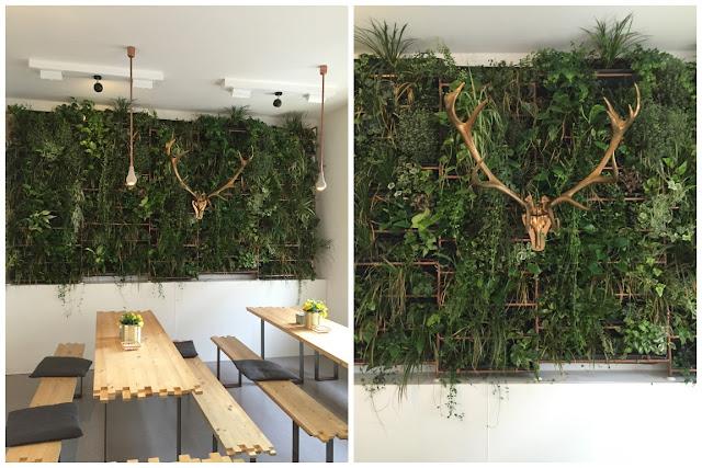 Koeln Laden ein Pflanzenwand
