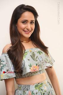 Actress Pragya Jaiswal Stills in Floral Dress at turodu Interview  0025.JPG