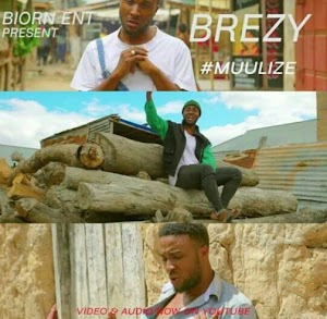 Download Mp3 | Breezy - Muulize