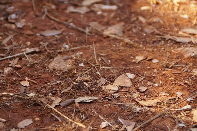 Roter Sand/ Boden in Kroatien Foto