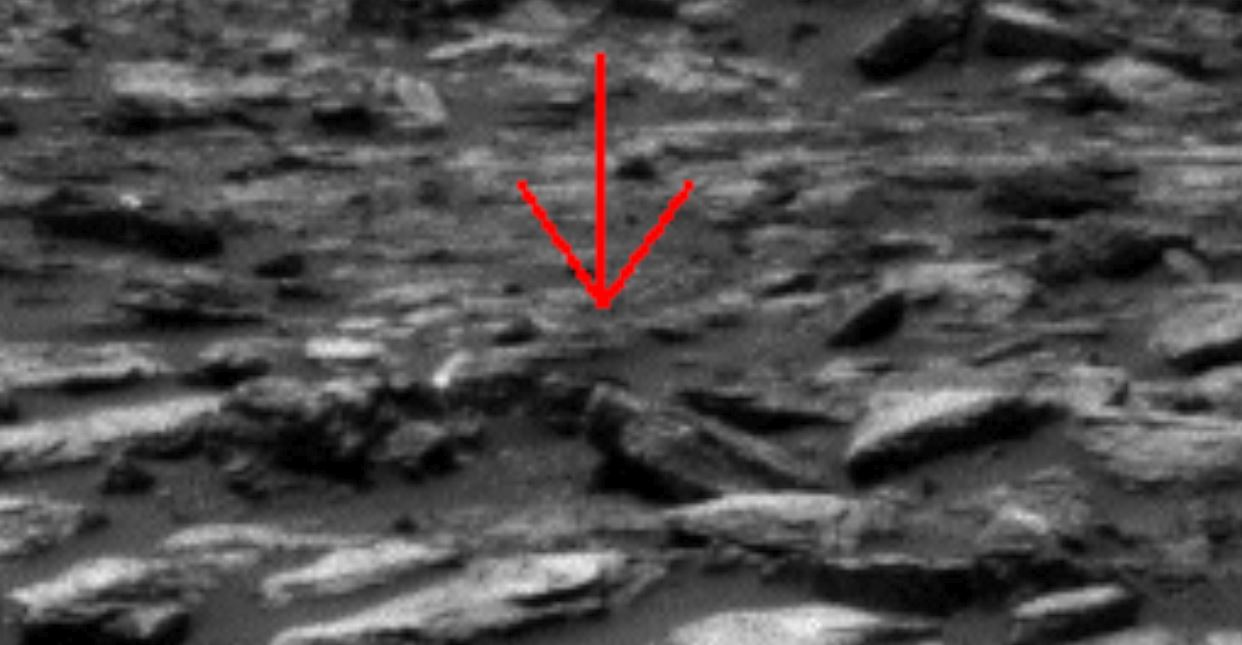 Daily Real Discoveries: MARS LATEST Alien or Anomaly?