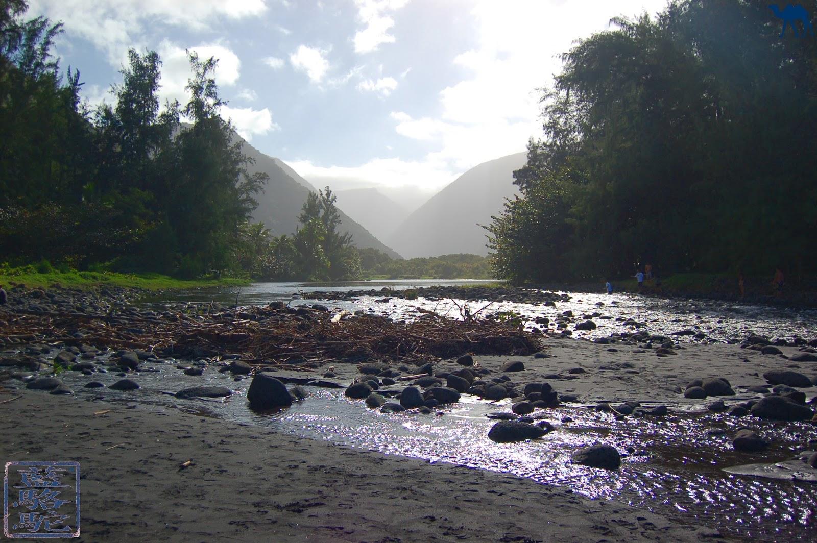 Le Chameau Bleu - Blog Voyage Hawaii -Photos d'Hawaii