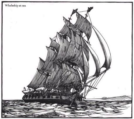 Dick essex moby whaleship