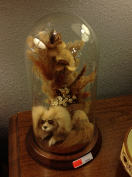 Dog and Flowers Under Glass Cloche