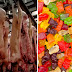 THIS Is What Gummy Candies Are Really Made From! Disgusting!
