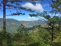 Pine Trees Mt. Ulap x Itinerary by Rizza Salas