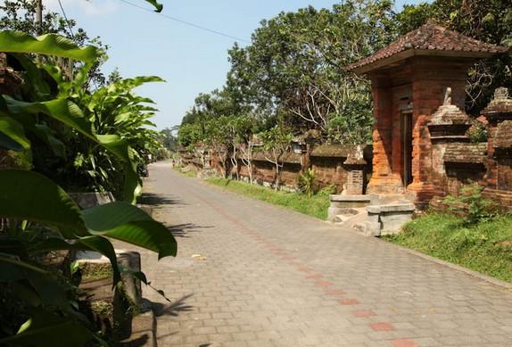 Destinasti Objek Wisata Desa Pangsan Di Petang Badung Bali