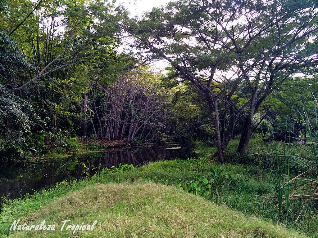 Imagen del Embarcadero del Río Mayabeque en la actualidad