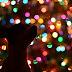 Podsumowanie grudnia na cztery łapy